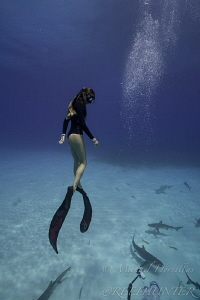 Competitive free diver Ashleigh by Michael Dornellas